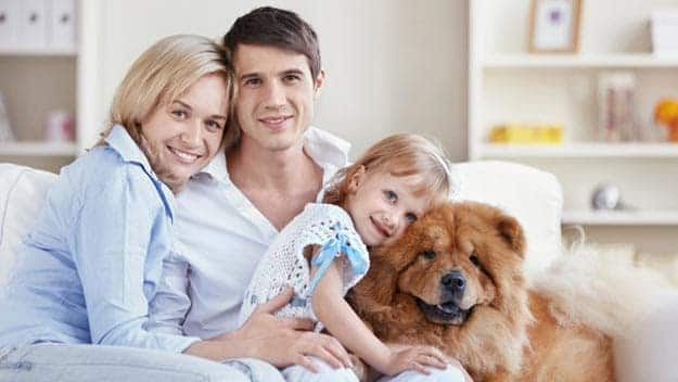 Wills & Trusts dog-young-family Direct Wills West Hendon